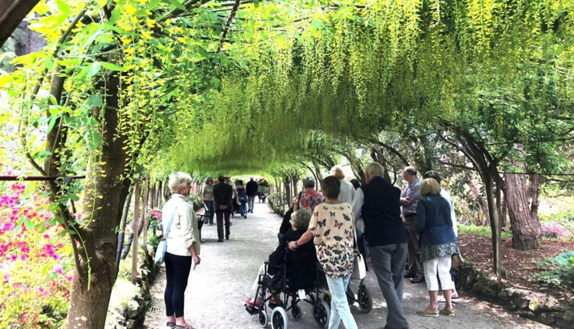 GReat Day Out (Bodnant) - 21-05-2018