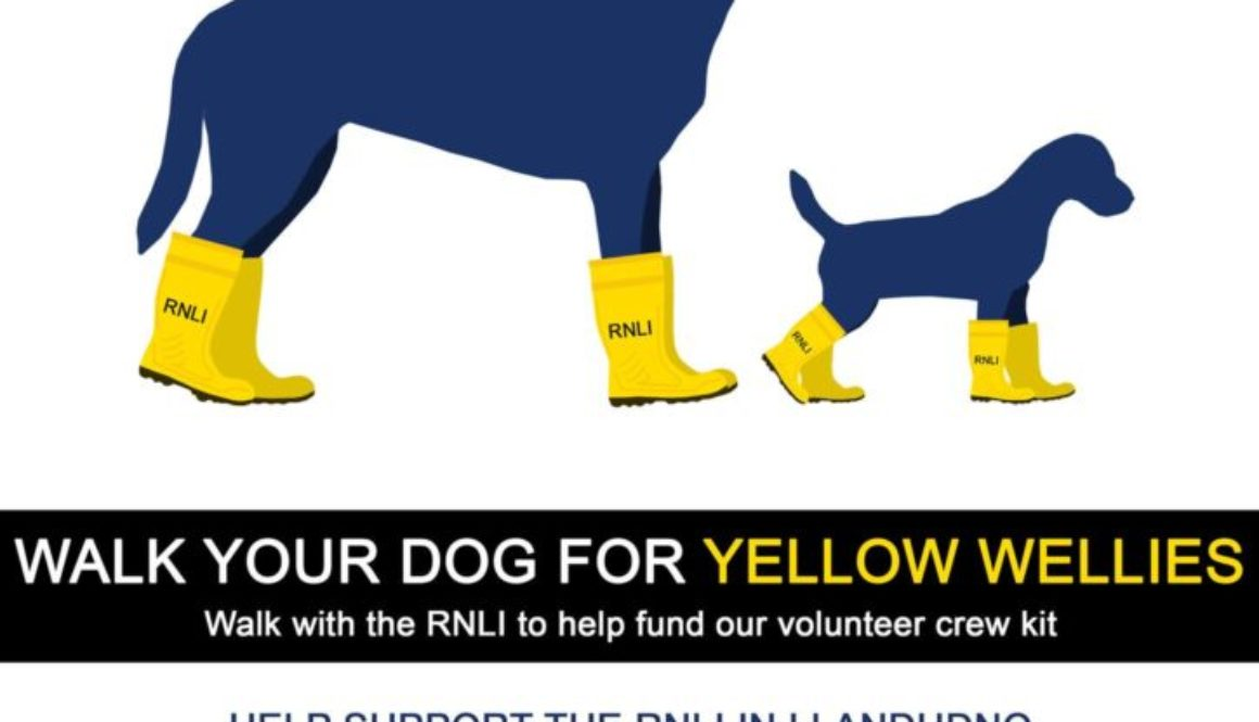 May 19th - RNLLI dogs