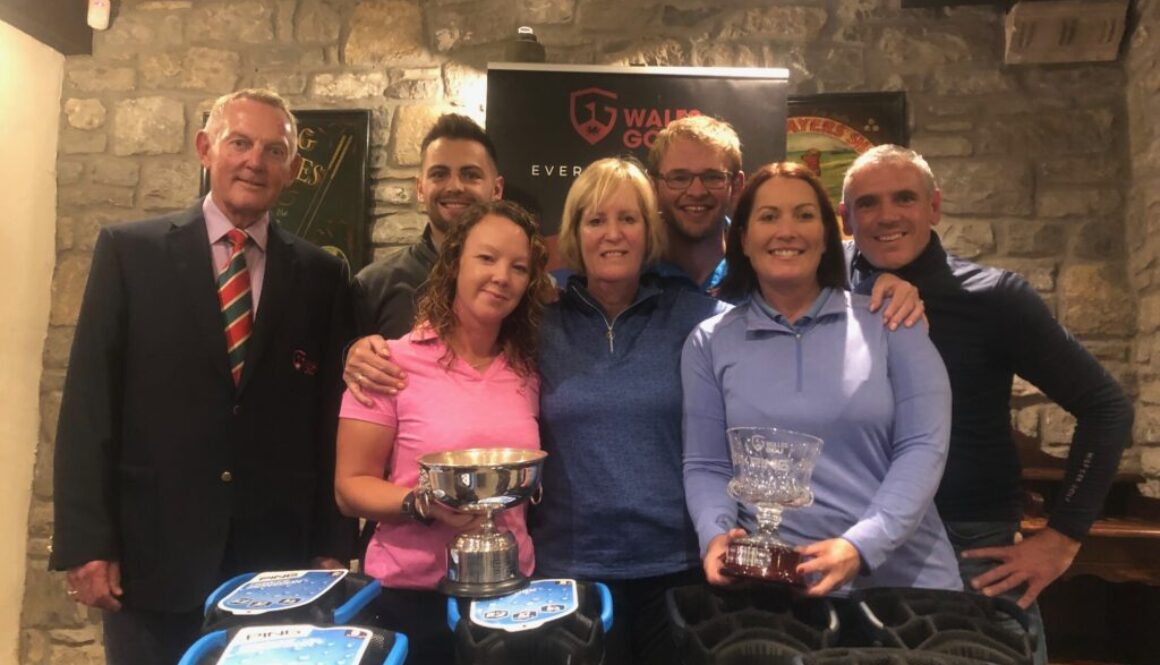2019 ping mixed medal winners